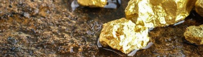 c_740_198_16777215_00_images_assets_GOLD_GOLDY.jpg